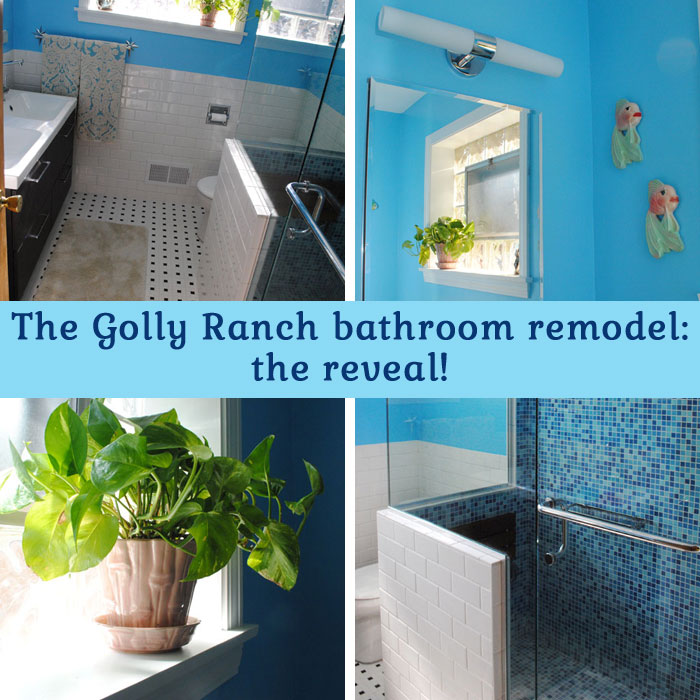 The Golly Ranch bathroom remodel: the big reveal!   By Gum, By Golly