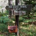 A week in the Northwoods