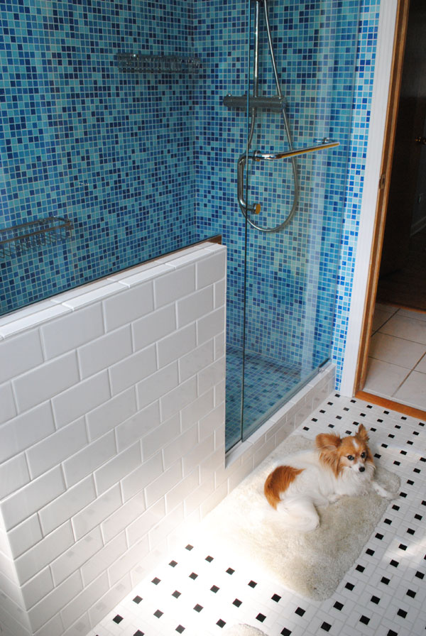 The golly ranch bathroom remodel the big reveal by gum for Diy dog bathing system