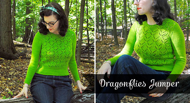 Dragonflies jumper