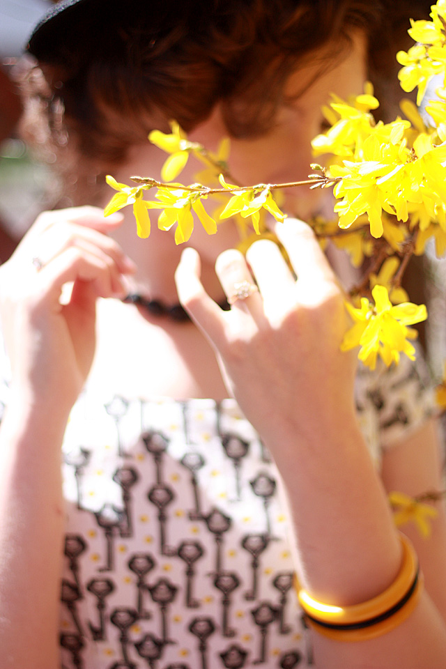 flowers and soft focus
