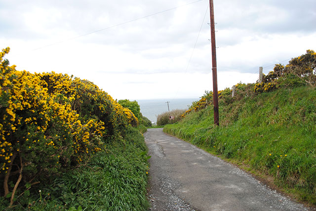 cliff road to Howth Head overlook