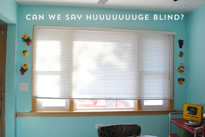 huge-blinds-before